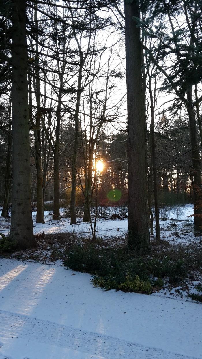 Dokkedal Kirkegård, Solnedgang i sne og frost